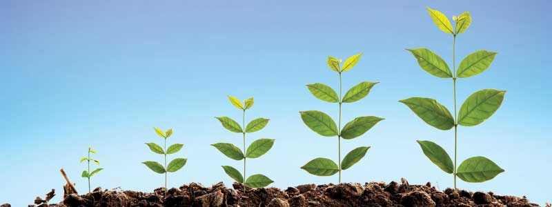 Grow Your Business: Increase the Number of New Customers