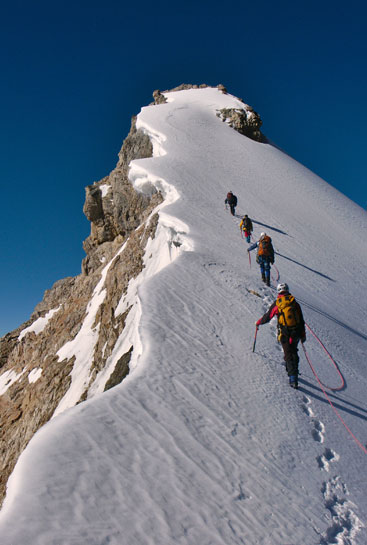 Group of climbers being lead up a mountain on a sunny day